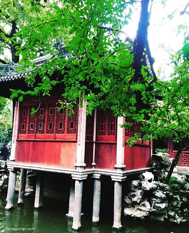 shanghai-06-11-2016-13-01-54